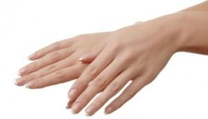 hands_15894403